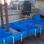 YWAM Constanta Aquaponics System